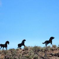 Wild Horse Monument 2