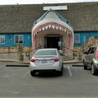 Great White shark head storefront in Ocean Shores
