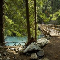 Thunder Creek Trail suspension bridge
