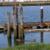 PNW Travel - Everett WA waterfront